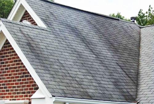 Cedar Rapids Power Washing Roof Cleaning Siding